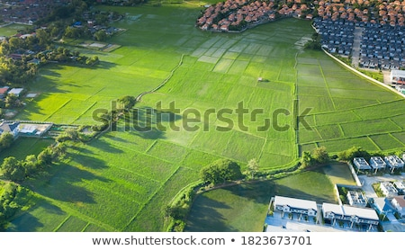 Fields of Investment Stock photo © xochicalco