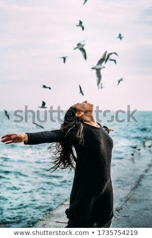 sereg · rózsaszín · légy · víz · óceán · madár - stock fotó © nizhava1956