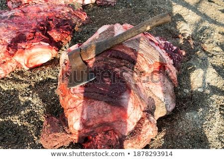 鯨 · 自然 · 血液 · 砂 · 死 - ストックフォト © rufous