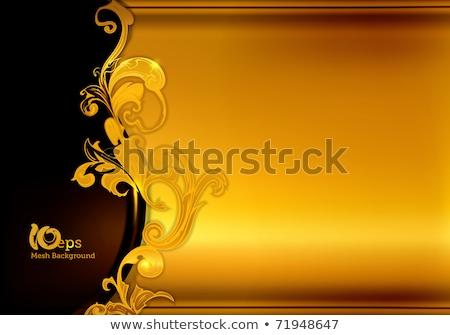 çerçeve renkli süsler değerli örnek Stok fotoğraf © yurkina