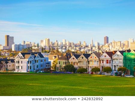 sziluett · festett · hölgyek · San · Francisco · városkép · történelmi - stock fotó © andreykr