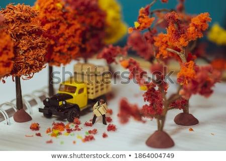 Miniatűr futár csomagolás ajándékdobozok születésnap doboz Stock fotó © mady70