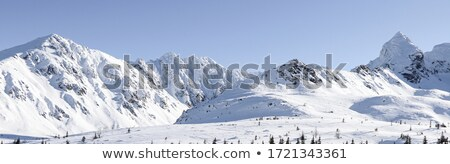 Panoramic view on snowy mountains at sunny day stock photo © BSANI