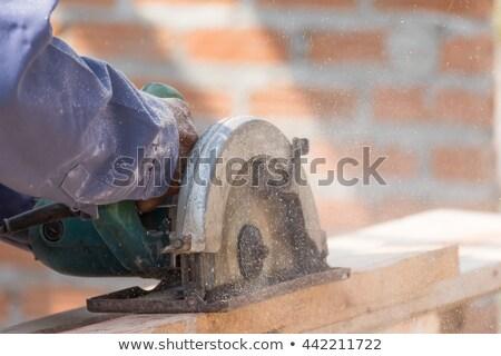 плотник увидела диск стороны здании Сток-фото © stoonn