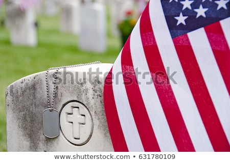 white crosses in american cemetery stock photo © fotoedu