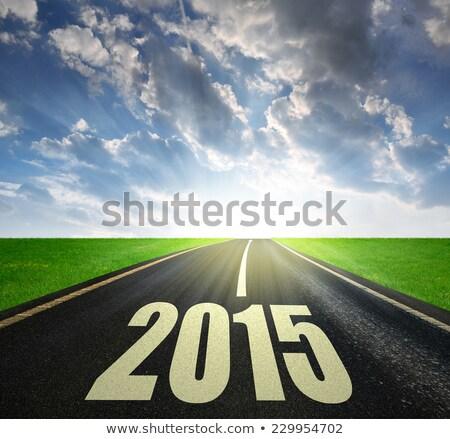 2015 futuro ano novo inverno cor branco Foto stock © Oakozhan