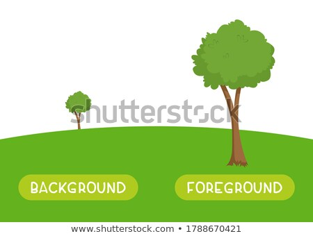 Opposite words for background and foreground Stock photo © bluering