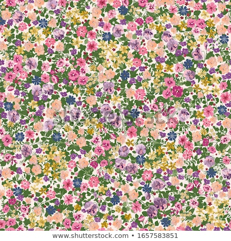 Stock photo: Floral seamless background, vector illustration.