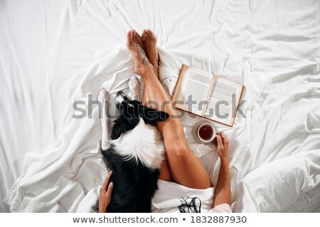 Woman Stroking Dog While Reading Stock photo © IS2