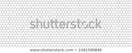 Sześciokąt wektora wzór tekstury streszczenie tle Zdjęcia stock © designleo