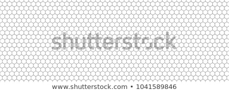 Hexágono vetor padrão textura abstrato fundo Foto stock © designleo
