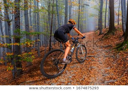 Mountain biker riding MTB in mountains and woods Stock photo © blasbike