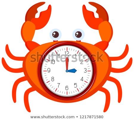 Moderno relógio caranguejo modelo ilustração projeto Foto stock © bluering