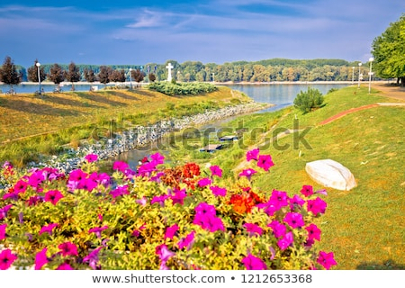 Town of Vukovar Vuka and Danube river mouth view Stock photo © xbrchx