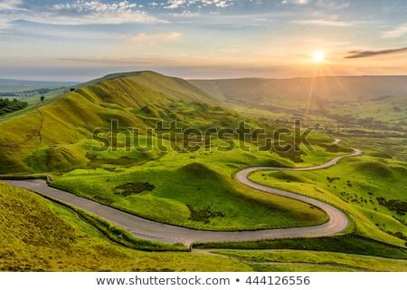 Curva estrada parque ilustração floresta paisagem Foto stock © colematt