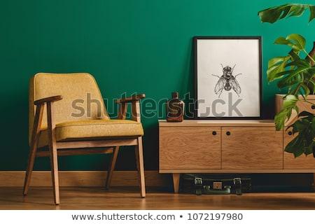 Inseto moldura de madeira ilustração fundo quadro arte Foto stock © colematt