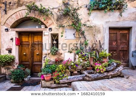 öreg · ház · tavasz · fal · festék · fekete - stock fotó © dariazu