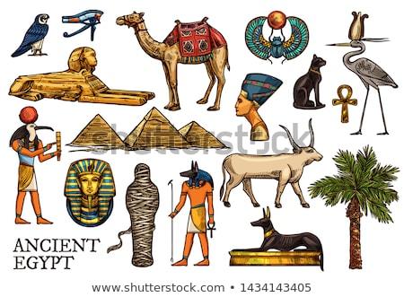 Esboço egípcio escaravelho assinar preto silhueta Foto stock © Arkadivna