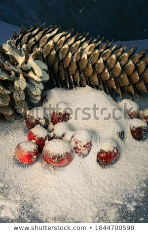 christmas fir decoration with cone in dessert bowl stock photo © dolgachov