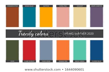 Denim kleur jaar vector trend palet Stockfoto © pikepicture