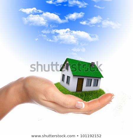 ház · kezek · kék · ég · épület · otthon · pálma - stock fotó © rufous
