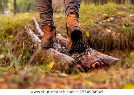 Adam yürüyüş köprü ayak orman düşmek Stok fotoğraf © pancaketom