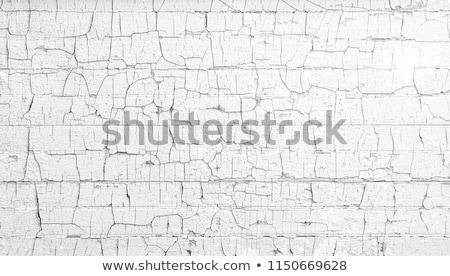 chipped ppaint Stock photo © guffoto