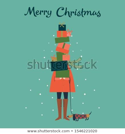 shopping lady with snowflakes Stock photo © dolgachov