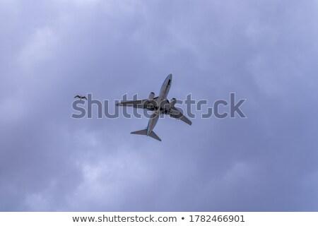 avião · aterrissagem · canárias · preto · vulcânico · solo - foto stock © lunamarina