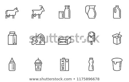Dairy produces in carton box. Milk. Vector Stock photo © leonido