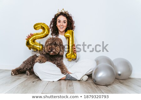 パーティ 犬 銀 衣装 シークイン ストックフォト © LynneAlbright