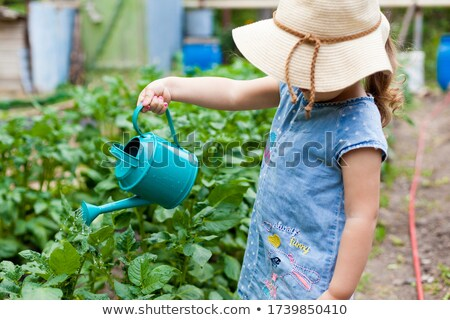 watering flower four Stock photo © tirrytich