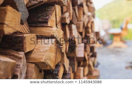 Bois de chauffage coupé arbres cheminée chauffage Photo stock © xedos45