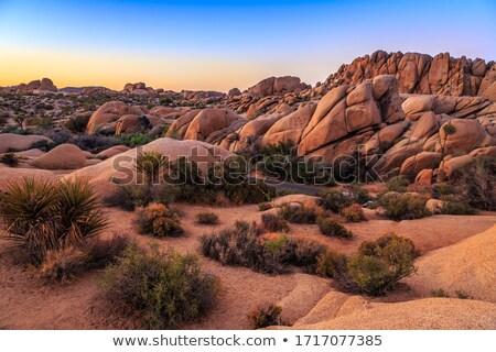 Jumbo Rocks, Joshua Tree National Park,  Stock photo © meinzahn