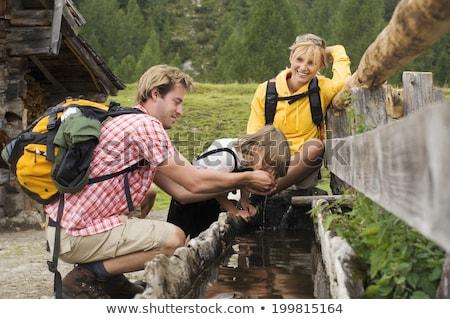 alpine fountain Stock photo © Antonio-S