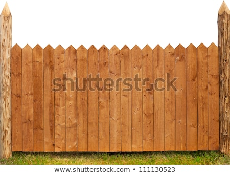 vintage old wooden fence with green grass stock photo © inxti