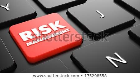 Risk on Red Keyboard Button. Stock photo © tashatuvango