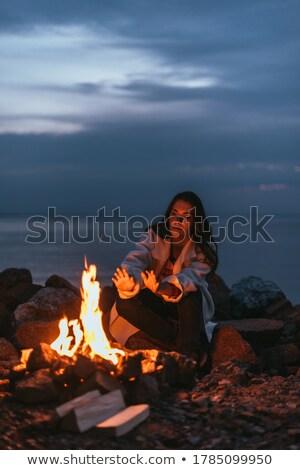 yakacak · odun · kömür · parti · doğa - stok fotoğraf © fotoyou