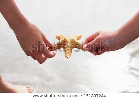 Children Discovering Starfish On Beach Stock photo © monkey_business