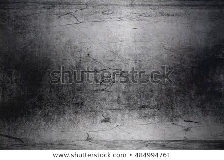 クモの巣 場所 文字 デザイン 自然 背景 ストックフォト © elenapro