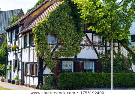 Ivy in giro finestra Germania rosso verde Foto d'archivio © backyardproductions