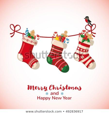 Aves Navidad calcetines ilustración familia nieve Foto stock © adrenalina