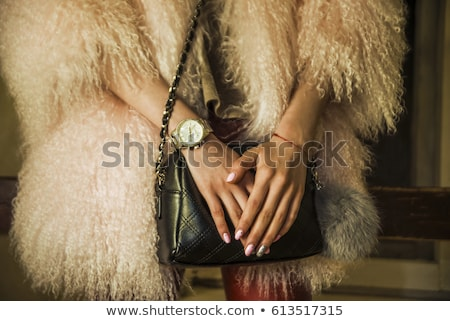 Сток-фото: красивая · девушка · красный · шуба · сумку · портрет