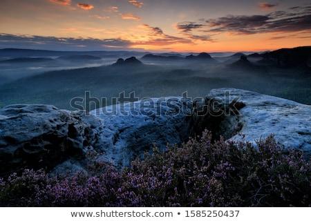 Colorful Cliffs in the fog Stock photo © wildnerdpix