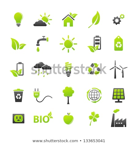 Globe Sign Green Vector Icon Button stock photo © rizwanali3d