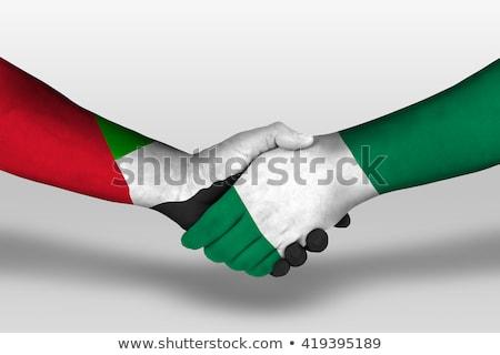 Emiraty Arabskie Nigeria flagi puzzle odizolowany biały Zdjęcia stock © Istanbul2009