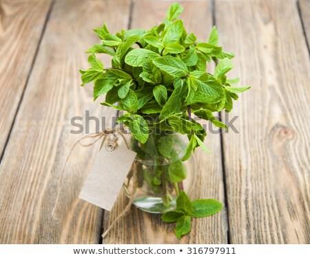 friss · menta · fehér · váza · desszertek · fából · készült - stock fotó © digifoodstock