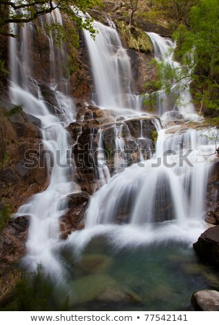 Waterfall in the portuguese national park of Geres Stock photo © homydesign