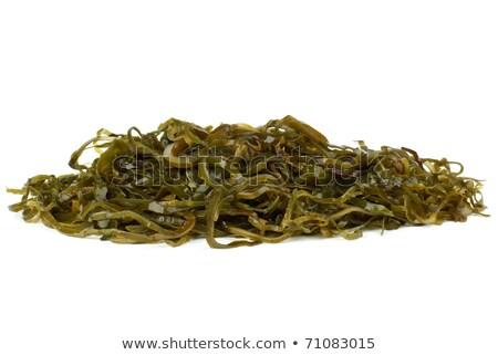 Some sliced laminaria Stock photo © digitalr