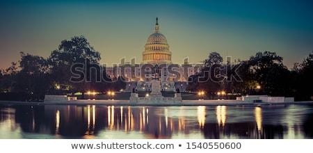 Zdjęcia stock: Washington · DC · miasta · banderą · rysunek · Waszyngton